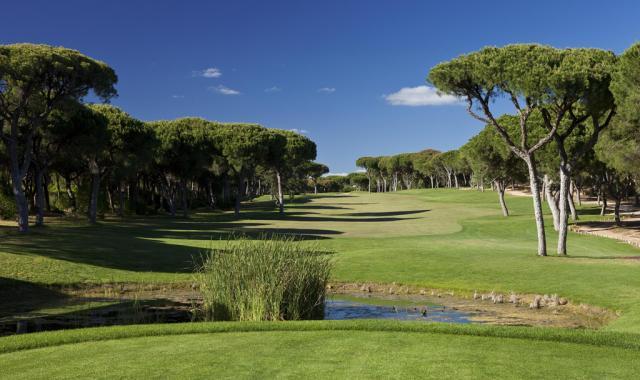 millennium-golf-course